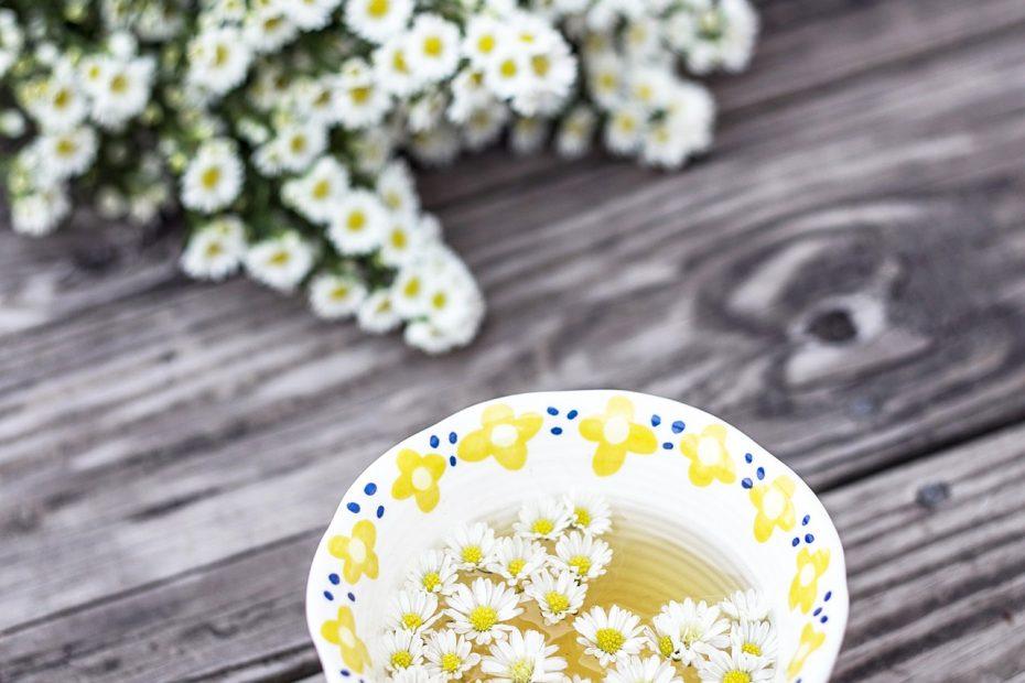 echte Kamille und eine Tasse Kamillentee