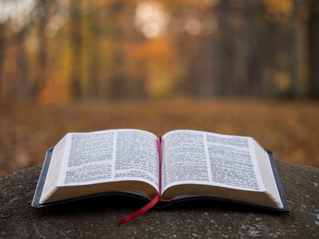 Bibelöle: aufgeschlagene Bibel